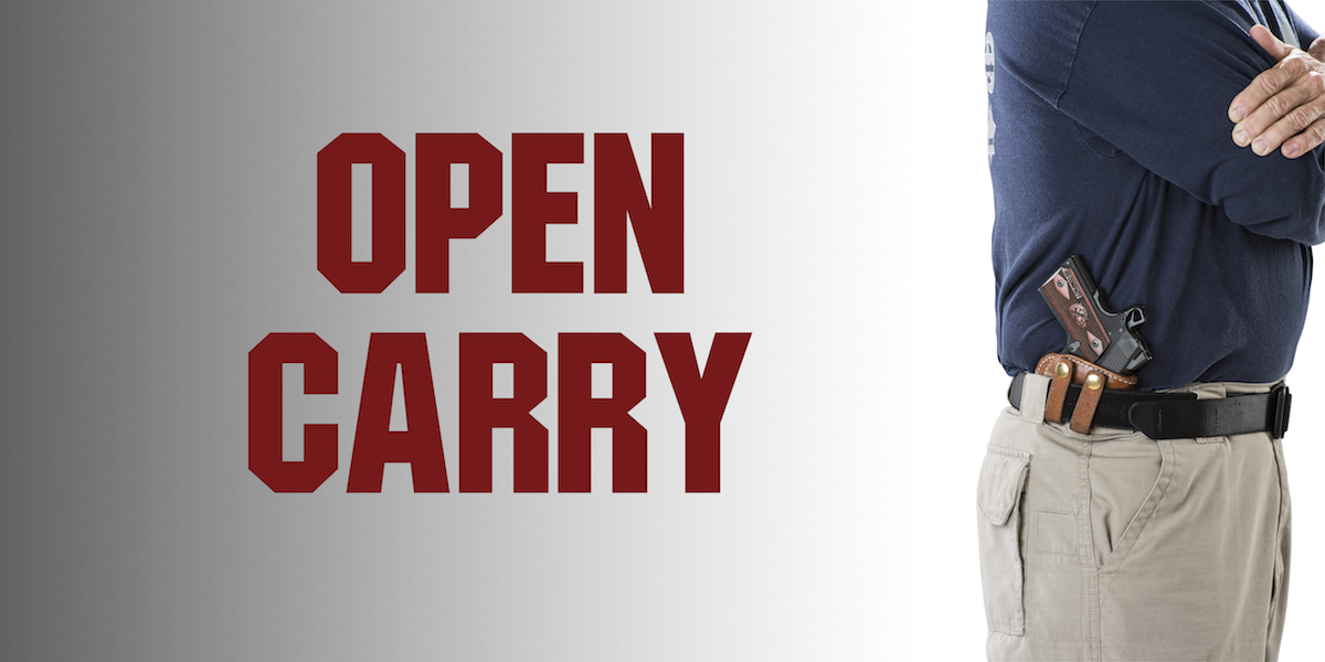 OpenCarry_v2.png