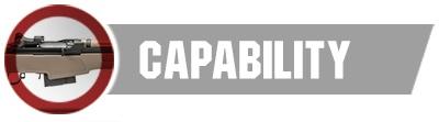 Capability-1