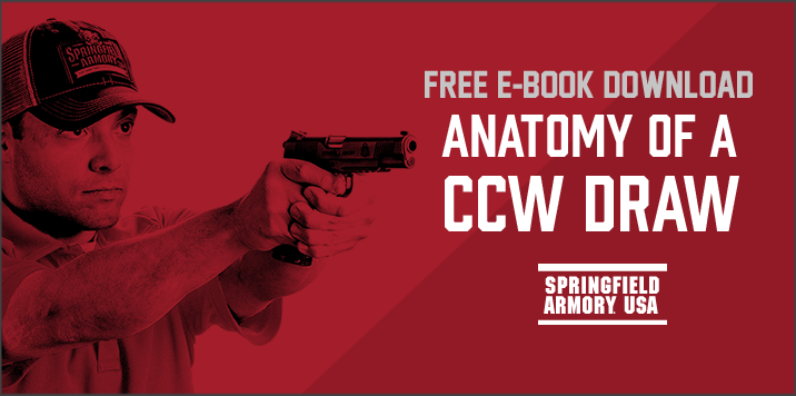 Springfield_AnatomyEbook.png